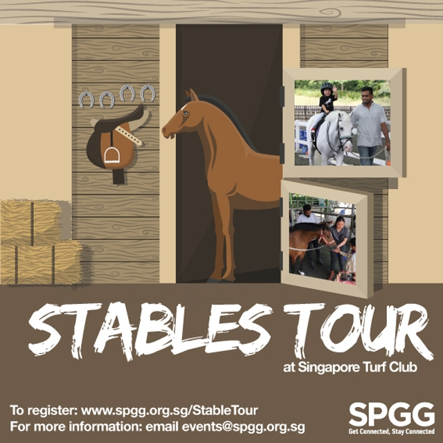 Stables Tour at Singapore Turf Club